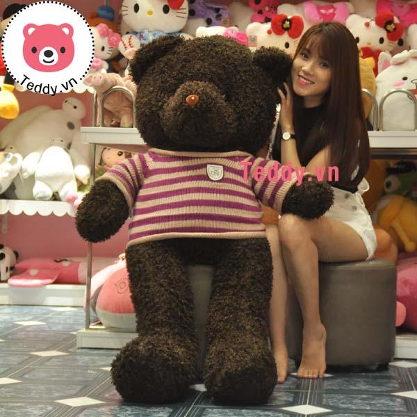 Gấu Teddy Đen Lông Xù 1m4