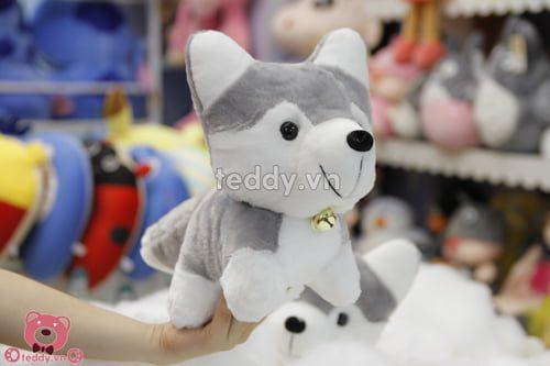Chó đeo chuông