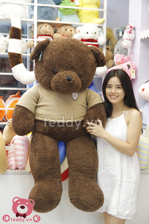 Gấu Teddy Head & Tales