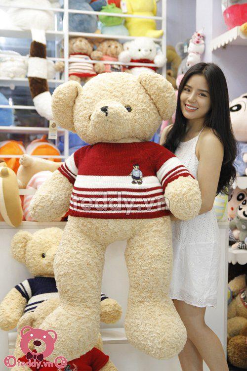 Teddy áo gấu teddy