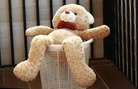 Cách giặt gấu bông to