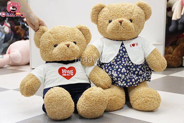 Teddy Hug Me Đôi Nhỏ