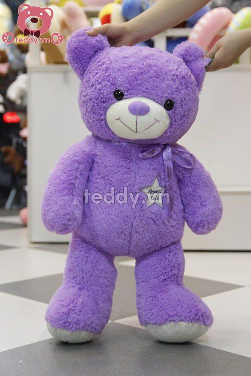 Teddy Lavender