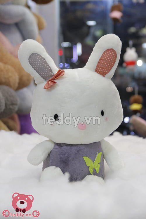 Thỏ nơ