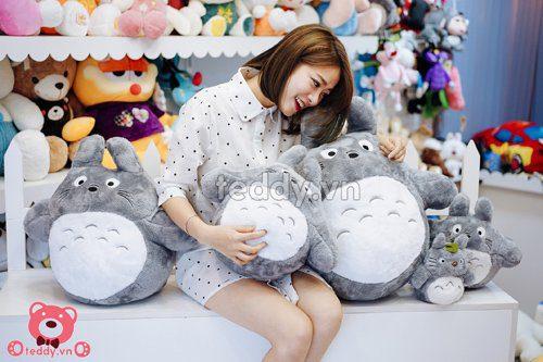 Totoro basic