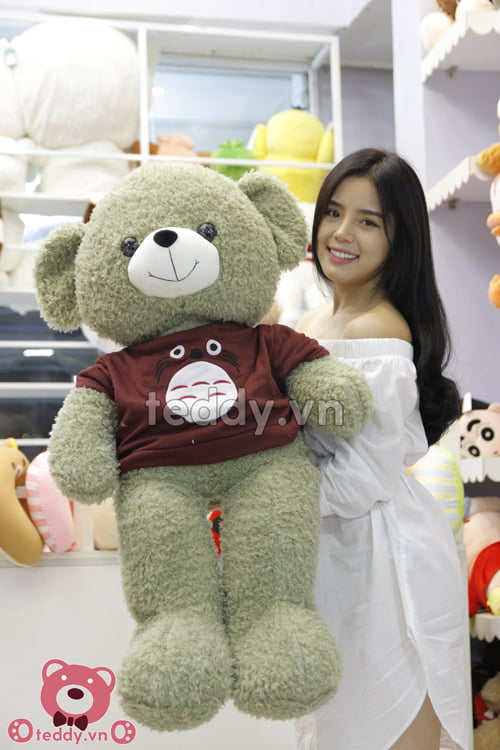Teddy áo totoro