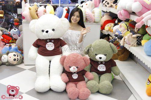 Gấu teddy áo totoro