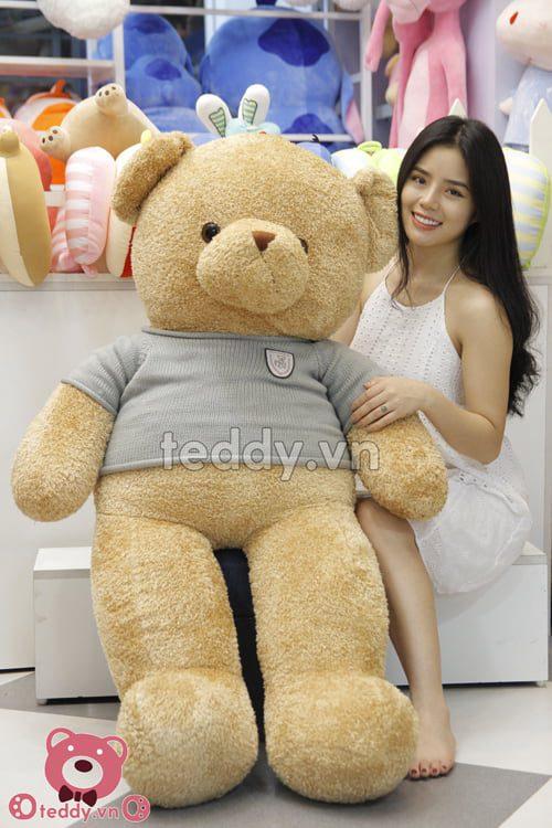 Teddy Head & Tales