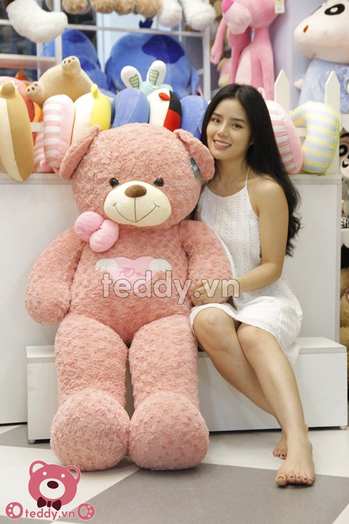 Gấu teddy angel hồng