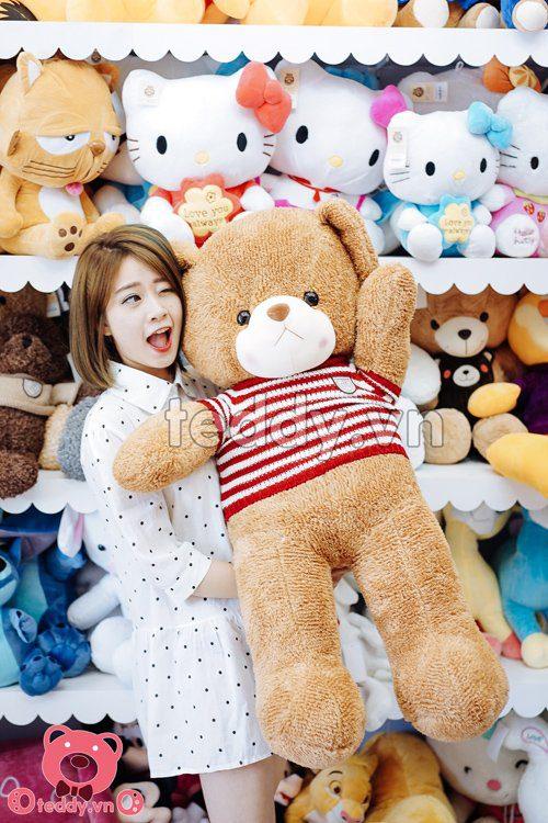 Gấu teddy len long ngắn