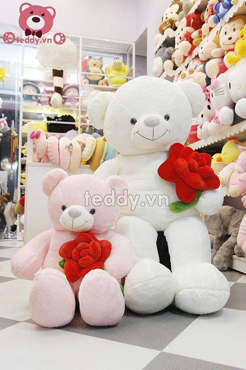 Gấu teddy ôm hoa hồng