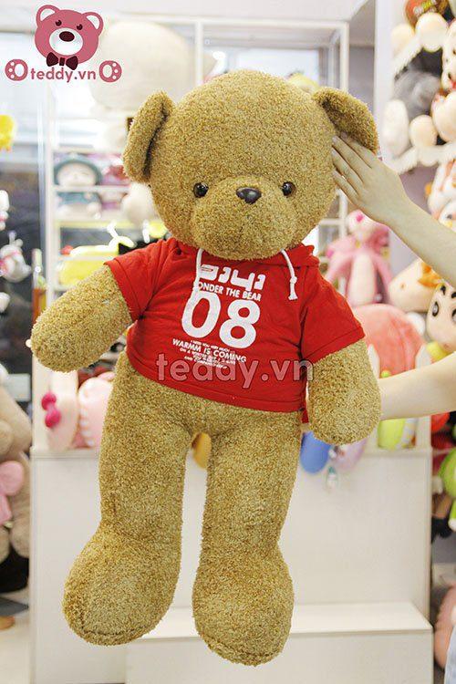 Teddy áo mũ đỏ
