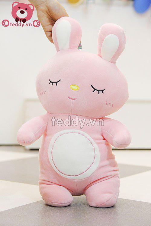 Thỏ hồng bụng trắng