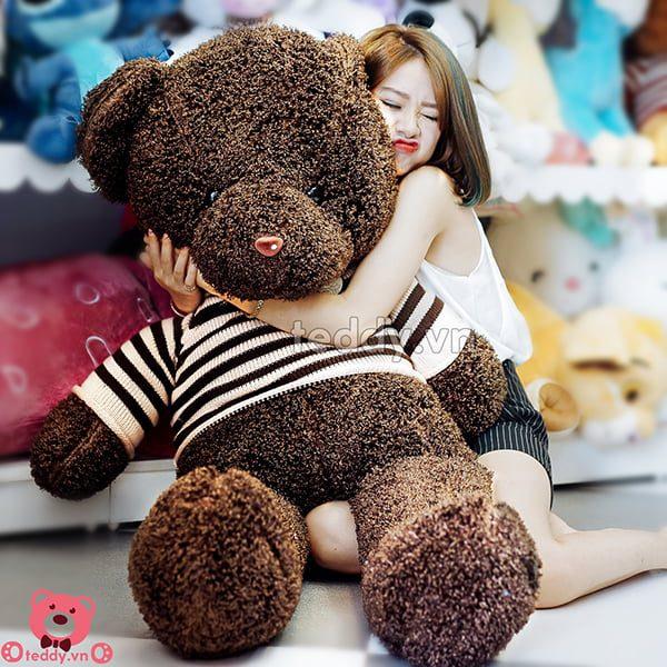 Teddy Đen Xù