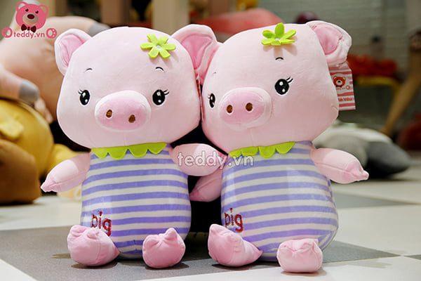 Lợn Áo Kẻ Bông