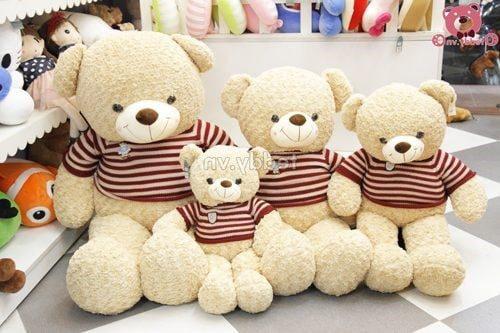 Chất liệu làm gấu teddy chính hãng là bông xoăn cao cấp 3 chiều