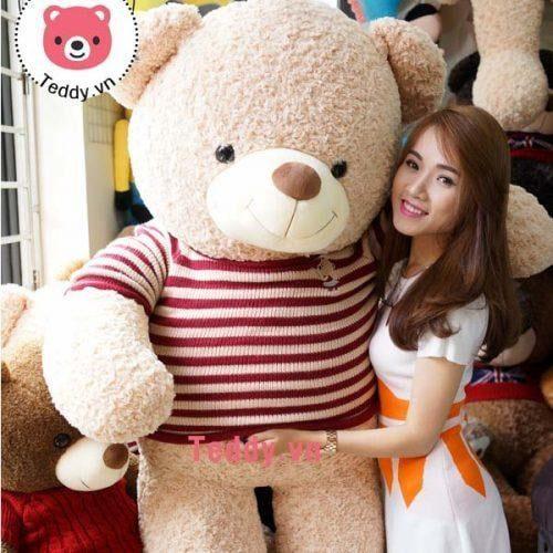 Gấu bông teddy 1m8 hàng shop chất lượng cao được nhiều người lựa chọn