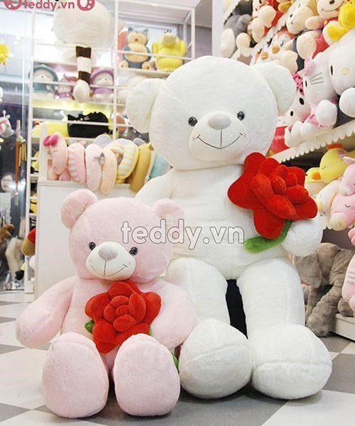 Gấu bông teddy bự ôm hoa hồng