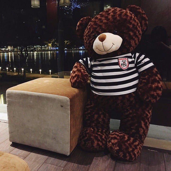 Gấu teddy giá rẻ Hà Nội