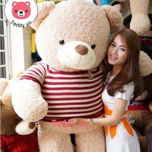 gấu bông khổng lồ logo baby