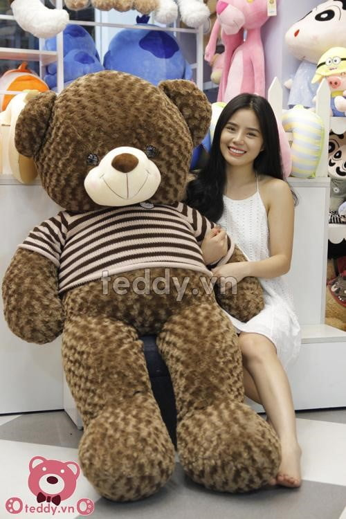 Gấu bông teddy socola bự