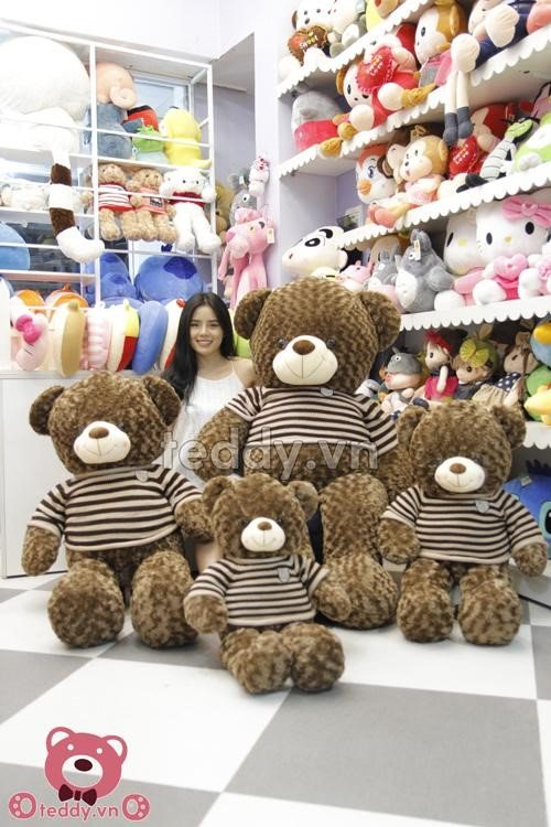 Gấu Teddy 1m2 socola