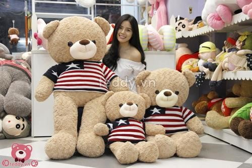 Gấu teddy nhập khẩu cam kết hàng chính hãng chất lượng cao