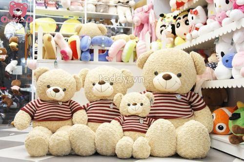 Màu sắc tươi tắn, chất liệu mềm mại của gấu teddy 1m8