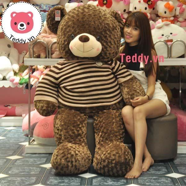 Mua gấu bông khổng lồ tại Teddy