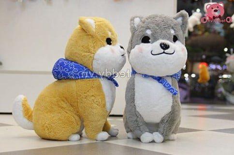Những chú chó bông xù Nhật