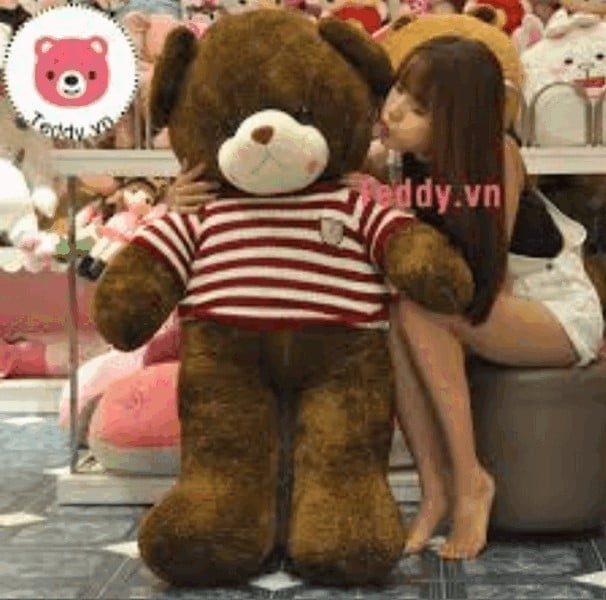Teddy.vn- Địa điểm mua gấu bông khổng lồ đáng tin cậy
