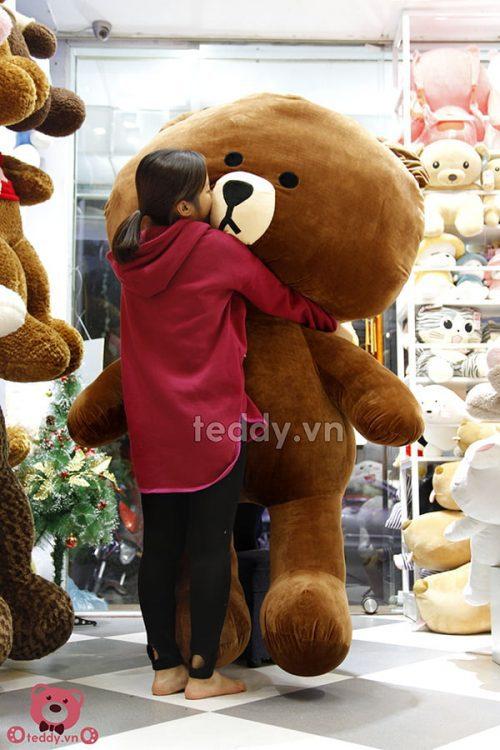 Gấu Brown Khổng Lồ
