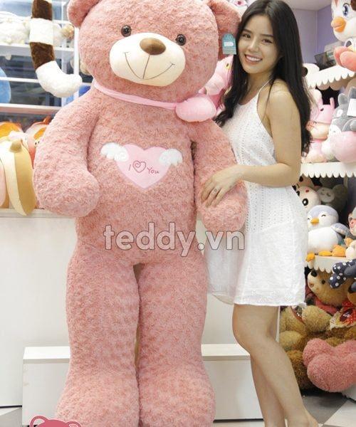 Gấu teddy giá bao nhiêu - gấu teddy chính hãng