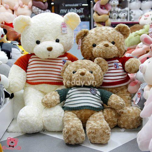 Gấu Bông Teddy Len Đầu Gấu