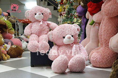 Teddy Hồng Xù