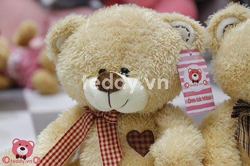 Gấu Tim