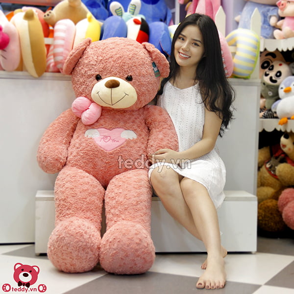 Teddy Angel Hồng