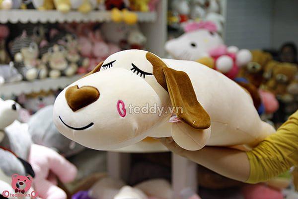 Chó Mũi Tim Nằm Dài