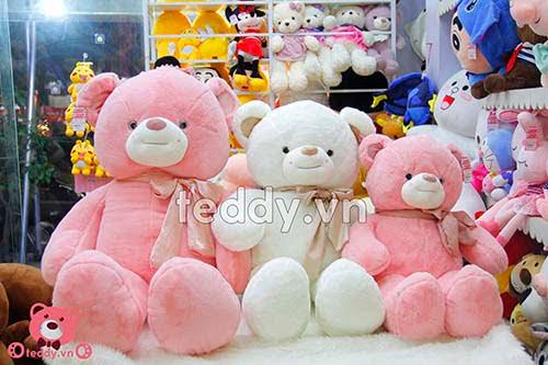 Gấu Bông Teddy Khăn