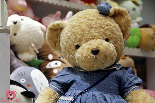 Teddy Váy Hoa