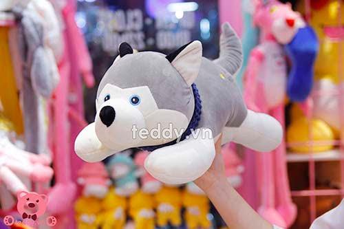 Chó Bông Husky Khăn