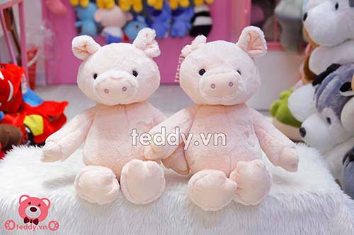 Lợn Bông Tim