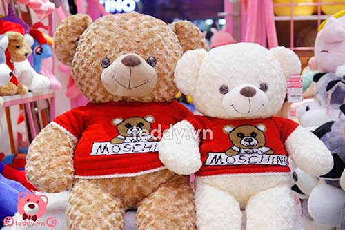 Gấu Bông Teddy Áo Moschino