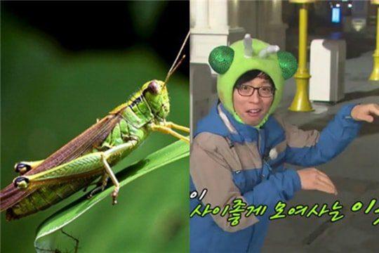 Hoa Du Ký - Bộ phim truyền hình Hàn Quốc siêu hot 2