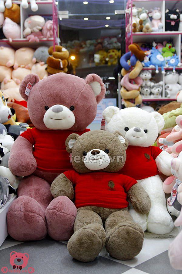 Gấu Bông Teddy Nhung Áo Len