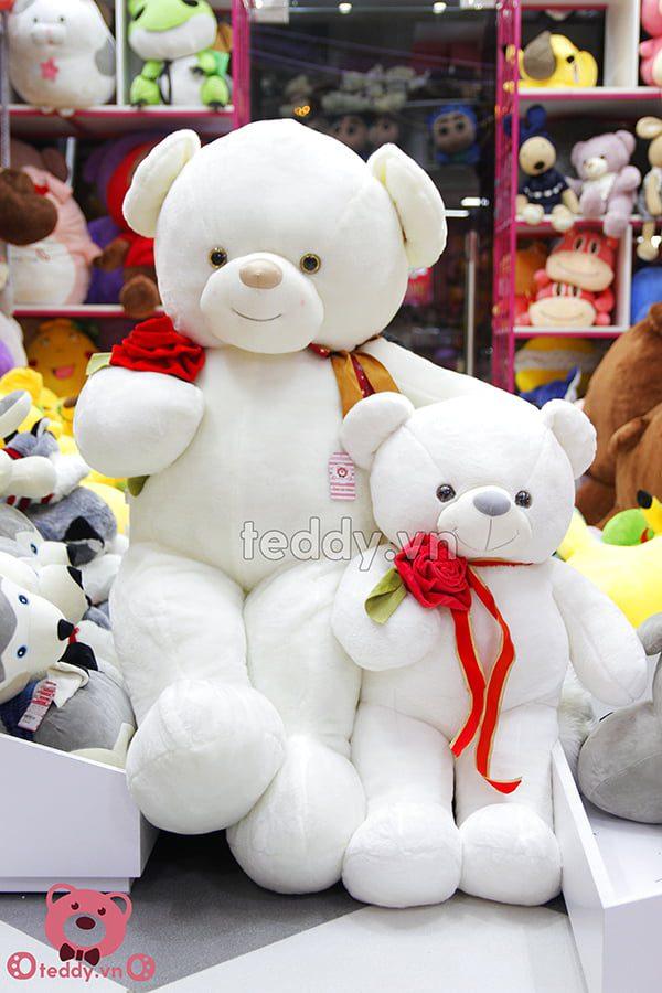 Teddy Nơ ôm Hoa Hồng