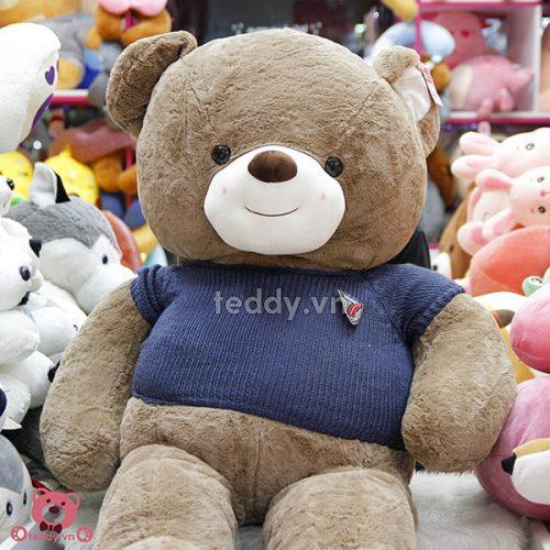 Teddy Nhung Áo Len Đại 1m6