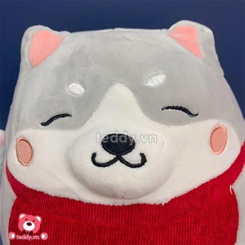 Chó Nhật Bông May Mắn