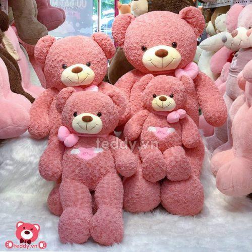 Gấu Bông Teddy Angle Hồng