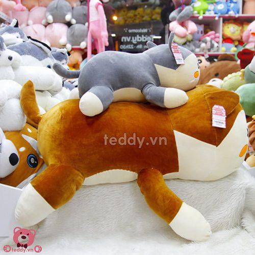 Chó Bông Lovely